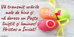 Past, Happy, Easter Activities, Past Tense, Ser Feliz, Being Happy