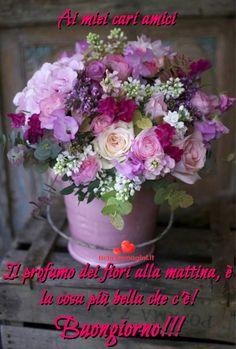 Un buongiorno con i fiori alle amiche di Whatsapp - BelleImmagini.it