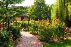 O nás Villa Rosa, Sidewalk, Garden, Plants, Collection, Rosario, Walkway, Garten, Planters