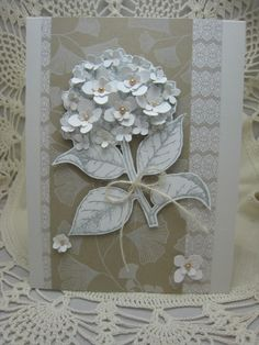 White Hydrangea | Flickr - Photo Sharing!