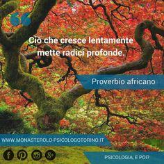 Ciò che cresce lentamente mette radici profonde. Proverbio Africano #Aforismi