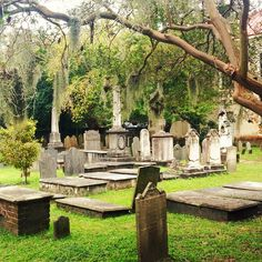 The graveyard at the Circular Congregational Church in Charleston