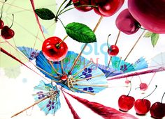 #기초디자인#종이우산#우산#체리#털실#화면구성#이오비상#입시미술#미대입시#실기#이오비상미술학원#기초디자인완성작 Design Art, Objects, Fair Grounds, Drawings, Painting, Drawing S, Painting Art, Sketches, Paintings