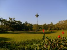 Parque da Cidade - Santana