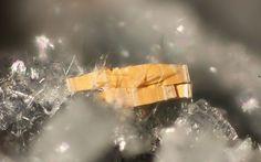 Strontiojoaquinite,   (Na,Fe++)2Ba2Sr2Ti2[Si4O12]2(O,OH)2•(H2O), on Albite, Crossite, Mina Numero Uno, Clear Creek, Hernandez, Clear Creek area, Picacho Peak, New Idria District, Diablo Range, San Benito Co., California, USA. Fov 2 mm. A double terminated crystal, perhaps dehydrated or otherwise altered. A typical specimen. Copyright © minresco