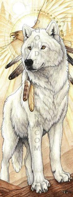 #Lobo…
