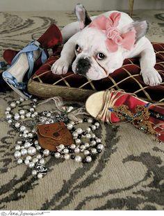#SaraZorraquino photo #BelénZavala styling #Glamour magazine #SPAIN #DOG #accessories #jewelry #shoes  #luxury