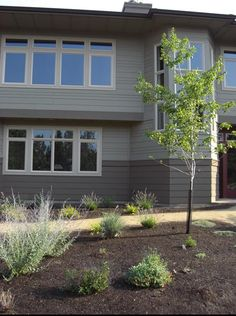 prairie style house photos | PHOTOS: Green homes across the USA Follow Green House on Twitter