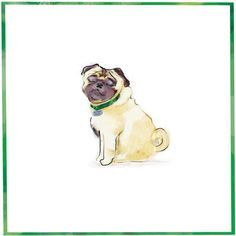 pug cards | The Pet Set Pug dog breed note card: © The Pet Set