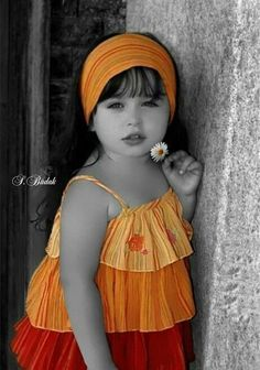 Orange Red Splash of Color / S.Budak