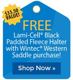 Free Bates Stirrup Leathers with Limited Edition Bates Hunter Jumper Saddle! Stirrup Leathers, Riding Pants, Cyber Monday Sales, Holiday Deals, Hunter Jumper, Black Friday Deals, The Selection, Shop Now, Free