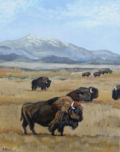 Buffalo Herd  Original Acrylic Painting on an 8 x 10 by PoofyDove, $40.00