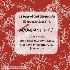 Little Birdie Blessings : 25 Days of God Given Gifts Day 1 ~ December 1 - ABUNDANT LIFE ~ I have come that they may have life, and have it to the full. John 10:10b