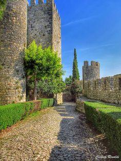 Detalhes do Castelo de Montemor-o-velho - Montemor-o-Velho