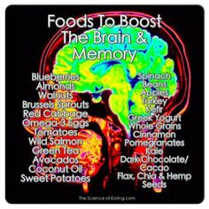 Foods To Boost The Brain & Memory