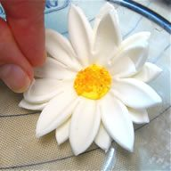 How to make flowers from gum paste or forndant