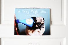 All You Need is Pug presents our third annual wall calendar: A Very Pugly 2016!  Enjoy a spectacular 2016 filled with 12 of our unique photos