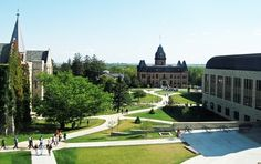 47 Best St Olaf College Images St Olaf Carleton College College
