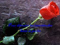 Richard Cocciante ''Pour elle'' - YouTube