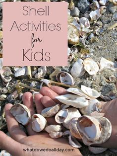 Bring summer beach fun home with these simple and fun shell activities for kids, including sensory play, art ideas and fine motor work.