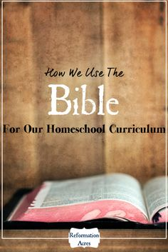 Is it sad that I've never thought of doing this? I mean, I teach from the bible, but not solely with the bible as curriculum. Very interesting!