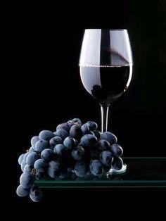Merlot - Vinho - Delicia - Adorei !!!!!!