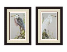 PRINT TITLE: GREAT BLUE HERON & AMERICAN EGRET. Mat Colors: Top-Ivory Design Mat, Middle-Brown, Bottom-Off White FRAME: Dark espresso brown composite wood frame. ARTIST: Art Lamay. OTHER DETAILS: Triple Matting, Clean paper backing, ready to hang, shatter resistant plexi glass. SHIPPING: ship via FedEx. ***WE DONT SHIP TO HAWAII OR ALASKA***  SIZE: approximately 17x33 Each