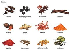 Vovabulary for spices used in cooking