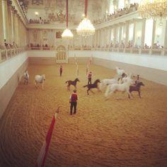 Spanish Riding School, Vienna.