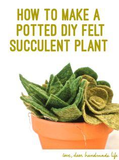 How to make a DIY felt succulent plant on Dear Handmade Life