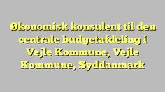 Økonomisk konsulent til den centrale budgetafdeling i Vejle Kommune, Vejle Kommune, Syddanmark