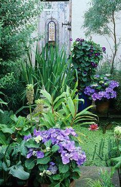 Courtyard Garden!