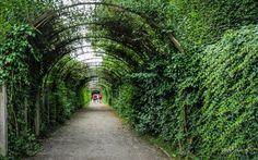 Salzburg's Famous Arbor by Michael Jarosz on 500px