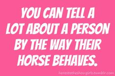 """So, my horse is lazy, calm and a """"I'm NOT going to run, I want to EAT!"""" kind of horse, what does that say about me? Lol!"""
