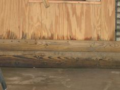 Experts explain how to deal with post-flood mold issues