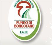 Fungo di Borgotaro - I.G.P.