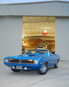 1970 Blue Convertible Cuda Old Muscle Cars, Best Muscle Cars, American Muscle Cars, Plymouth Barracuda, Dodge Chrysler, Pony Car, Dodge Charger, Classic Trucks, Classic Cars