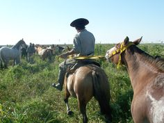 De a caballo por las islas de Victoria, Entre Ríos