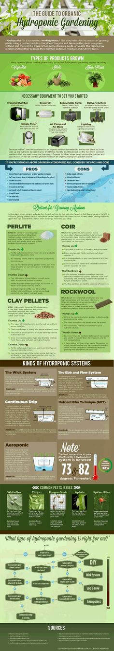 The Guide to Organic Hydroponic Gardening - Hydroponics Curacao