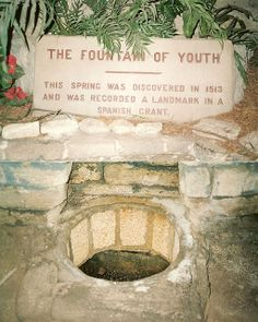 Fountain of Youth, St. Augustine, Florida - I drank from the Fountain of Youth with Aunt Linda! Visit Florida, Old Florida, State Of Florida, Florida Vacation, Florida Travel, Vacation Spots, Vacation Ideas, Palm Coast Florida, Florida Trips