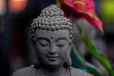 bouddha by Christophe descampeaux on 500px