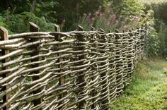 wattle fence -- DIY FREE fencing and it also gives a lovely english garden feel.  What could be better?