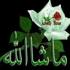 Beautiful Allah Names Wallpapers Beautiful Allah Names Beautiful