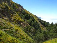 California backpacking- Ventana wilderness trail