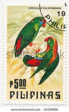 Philippines: Loriculus philippensis, Philiphine hanging parrot - (Papagaio da suspensão das Filipinas)