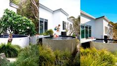 Sydney Plunge Pool by Australian Plunge Pools Rooftop Terrace, Terrace Garden, Above Ground Pool, In Ground Pools, Exterior Paint Schemes, Cottage Renovation, Outdoor Spaces, Outdoor Decor, Small Pools