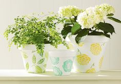 Martha Stewart Crafts™ Mother's Day Terra Cotta Pots - coming soon
