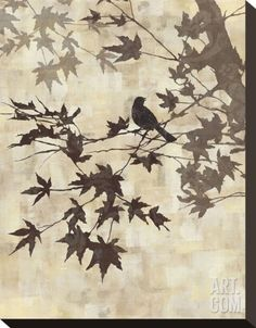 Maple Chorus II Stretched Canvas Print by Keith Mallett at Art.com