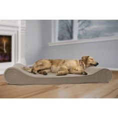 I purchased a human mattress like this one: it blows itself up over time, and comes tightly under pressure.  I love how this dips, quite sexy gor a dog bed and a good price. They don't seem to have Jumbo size left. Microvelvet Luxe Lounger Orthopedic Contour Pet Bed | Overstock.com Shopping - The Best Deals on Orthopedic Pet Beds