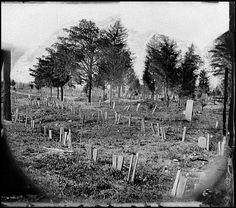 Graves of Confederate soldieres with boards for markers at Hollywood Cemetary, Richmond, Virgina. 1865.